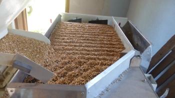 La vibration, l'inclinaison de la table et la soufflerie de la table permet de séparer les grains de même forme et taille en fonction de leur poids